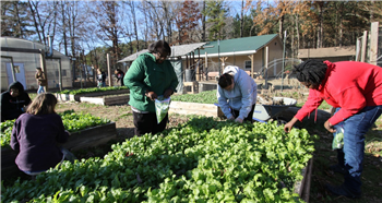 Brickhouse using green thumb to grow Northwood students